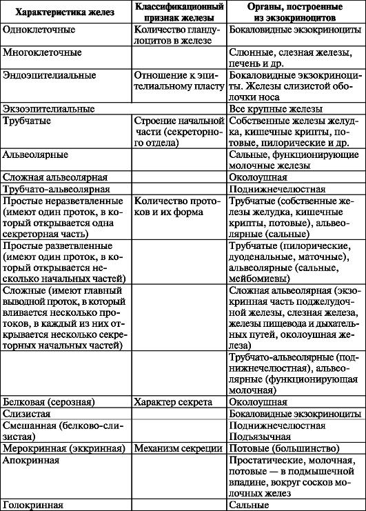 половой систем (рис. 15).