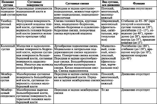 Суставы пояса верхней конечности таблица лечение суставов дарсонвалем