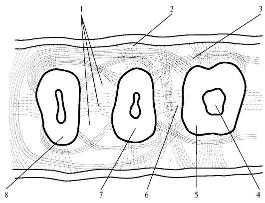 Строение периодонта.