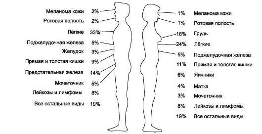 продукты стимулирующие похудение