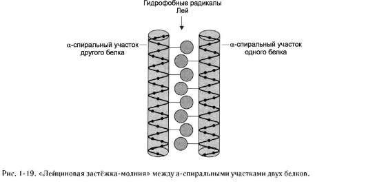 трёхмерной структуры