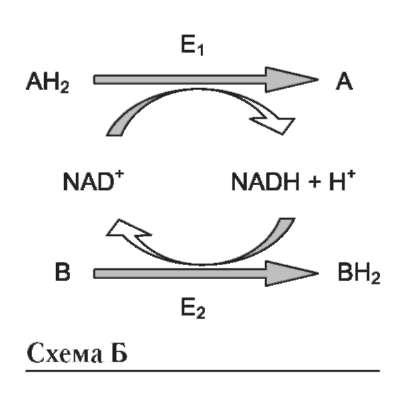 форма субстрата 1;