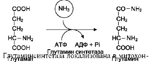 Контрольная работа по физике класс по теме молекулярная физика ПРОСВЯЩЕНИЕ1987 Это контрольная работа по физике 10 класс по теме молекулярная физика кто находит