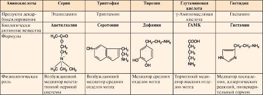 схема инактивации аминов в организме