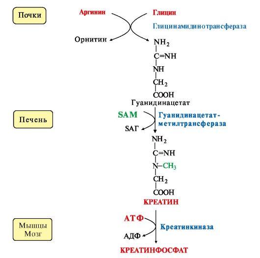 Схема синтеза и использования