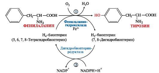 Реакция гидроксилирования