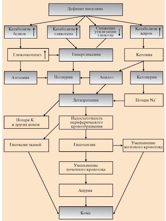 Сахарозаменители при диабете 1 типа