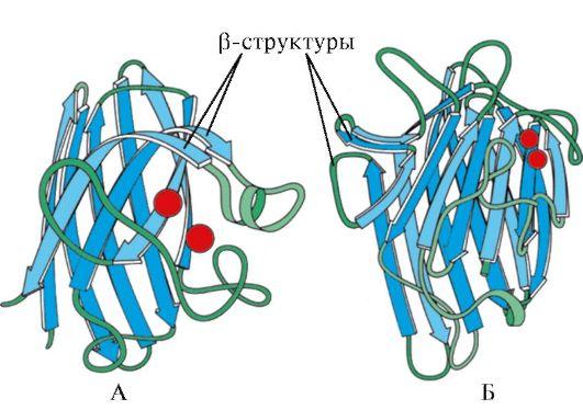 Вторичная структура