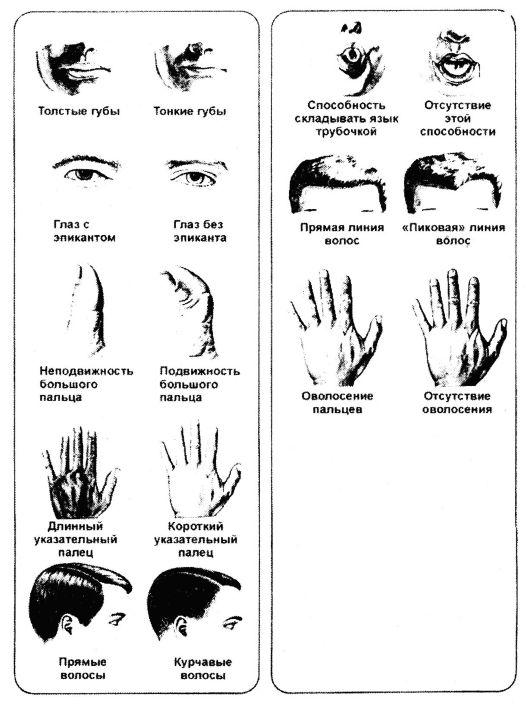 Как очистить стекла очков для зрения