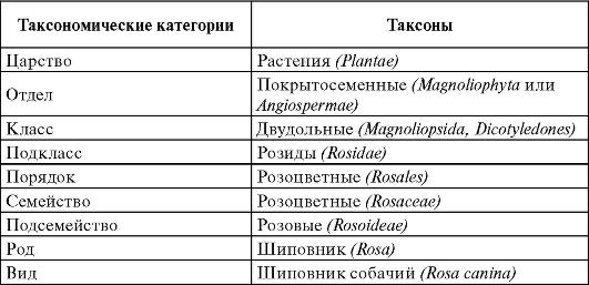 К. Линнея «Виды растений»)