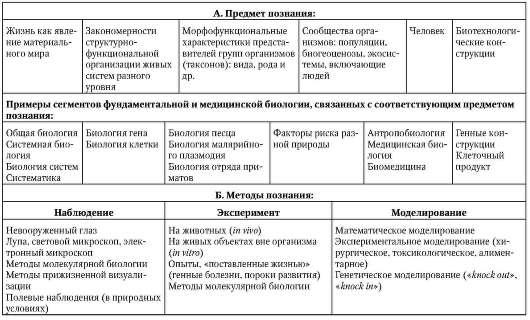 В англоязычной учебной
