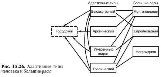 Схему эволюционных