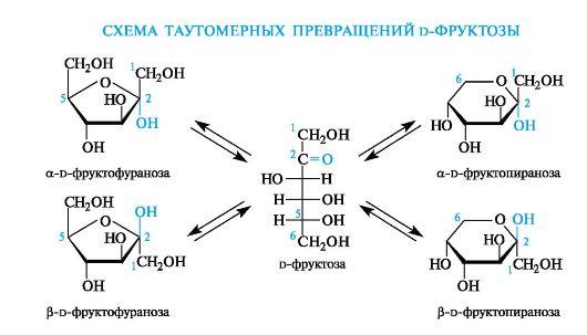 Схема строения рибозы
