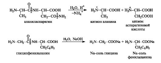 Пептиды белки узи на простату в мукачево гармония