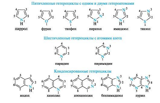 Пятичленные и шестичленные гетероциклические соединения