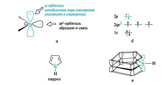 Атомы углерода и азота в нем,