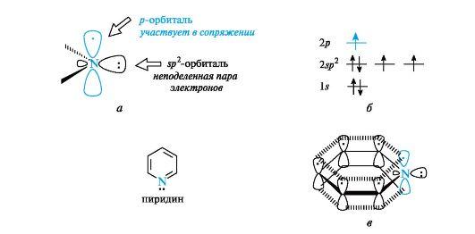 Пиридиновый атом азота (а),