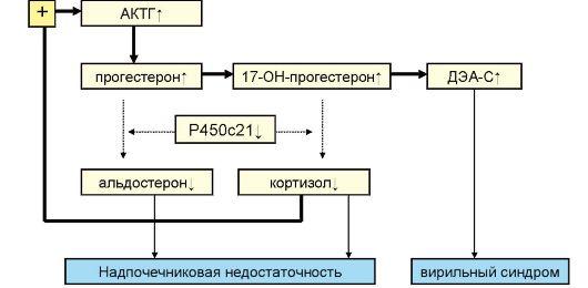 Схема патогенеза врожденной