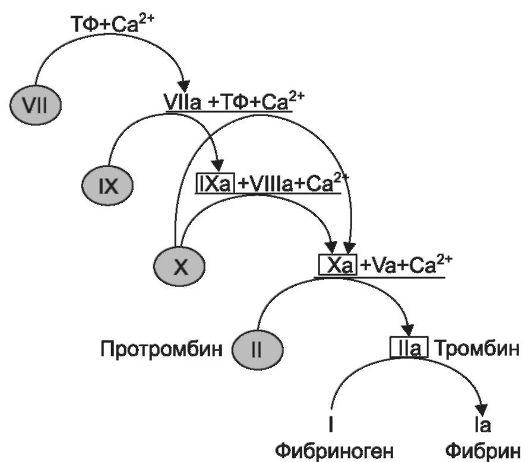 Схема активации свертывания
