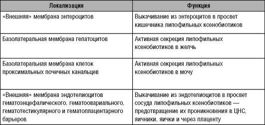 блокаторы статины