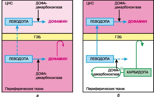 ГЭБ - гематоэнцефалический