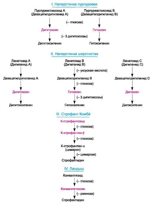 Схема 14.1.
