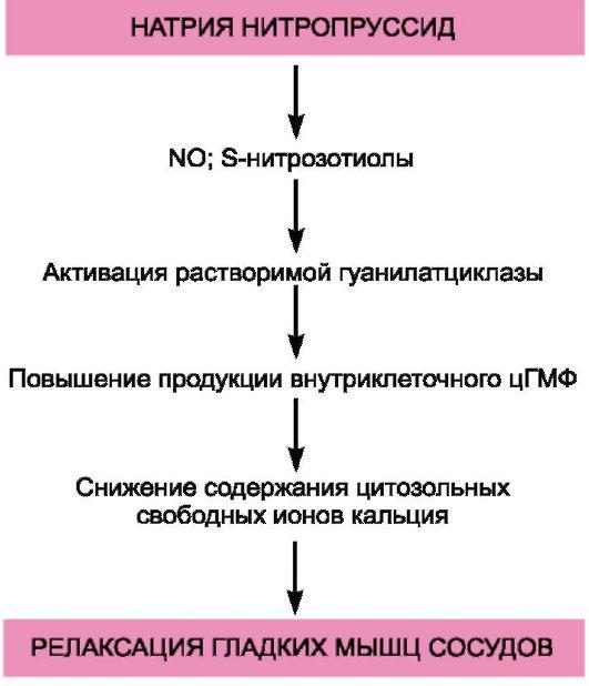 Схема 14.7.