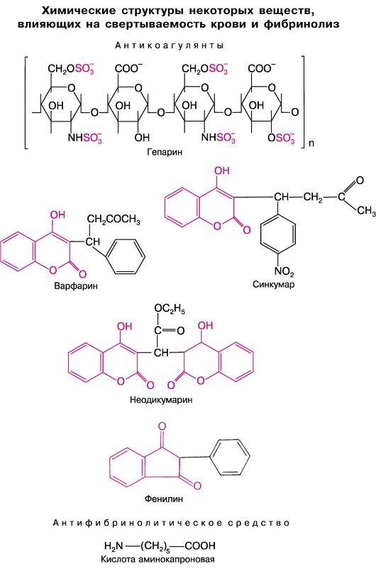 chto-takoe-agregatsiya-spermotazoidov