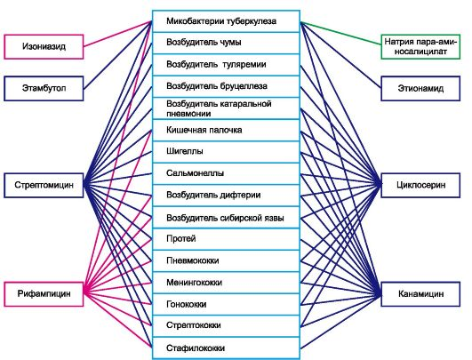 синтаксис от паразитов отзывы