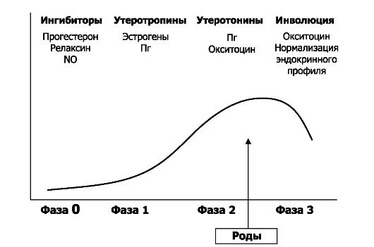 zrelaya-seks-s-dvumya-muzhikami