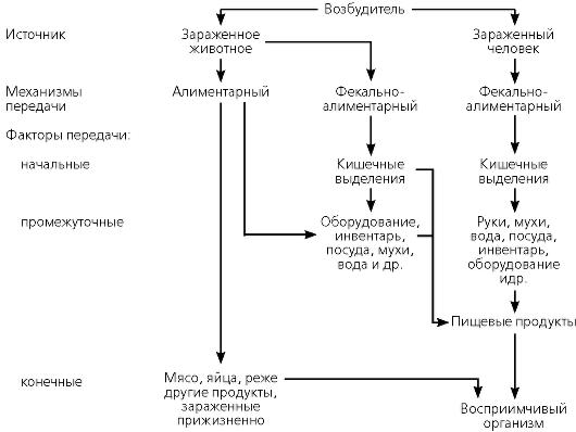 Глава 5. ГИГИЕНА ПИТАНИЯ