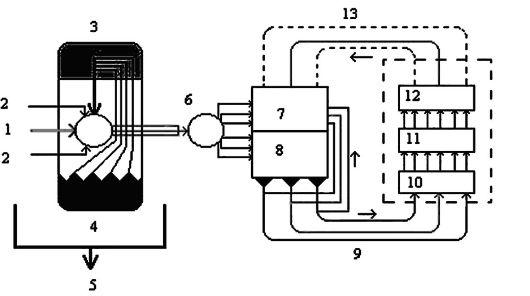 Схема саморегуляторных