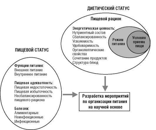 Анализ и коррекция пищевого