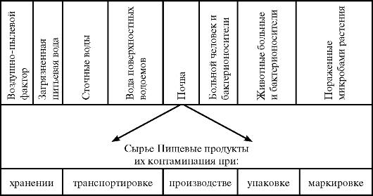 Современный анализ уровня