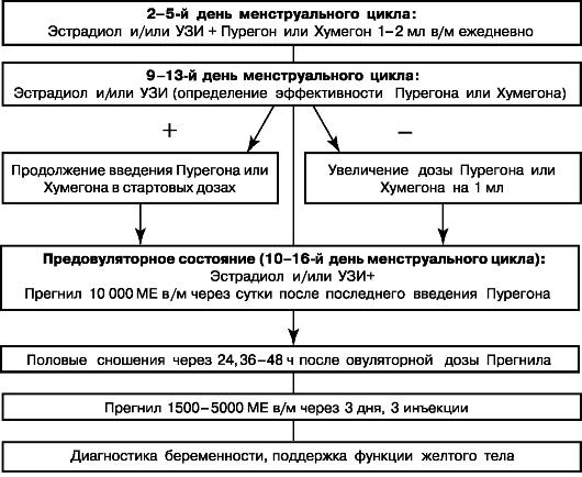 Схема индукции овуляции