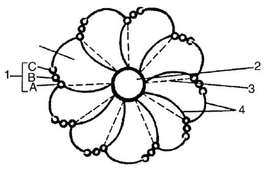Схема строения клеточного