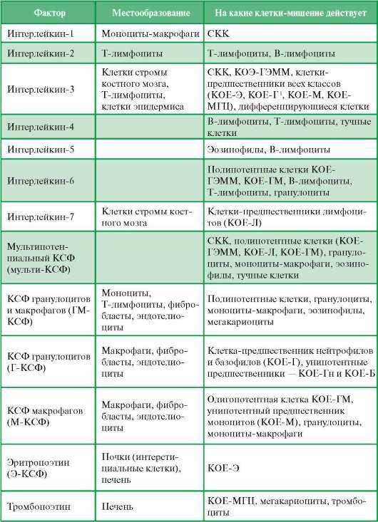 1 Нейтрофилы, эозинофилы