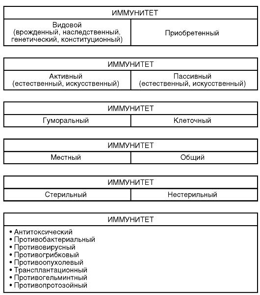 Классификация видов иммунитета