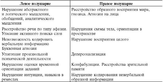 отделы головного мозга и их функции таблица: