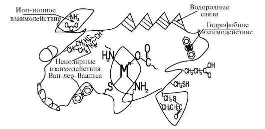 Мn+ - ион металла активного
