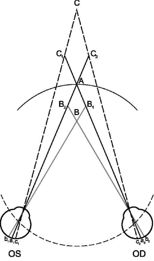Зрение Бинокулярное фото