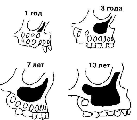 J.Ferracoli; 1942 (схема)