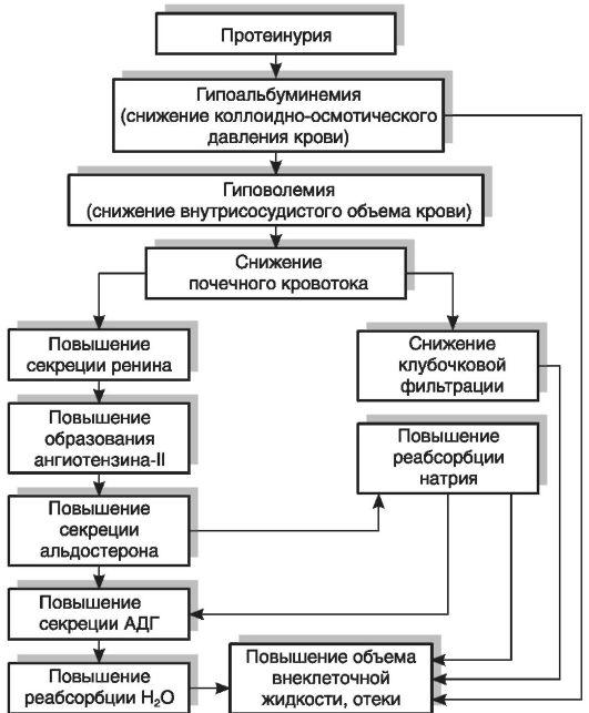 Лекция по хирургии портальная гипертензия