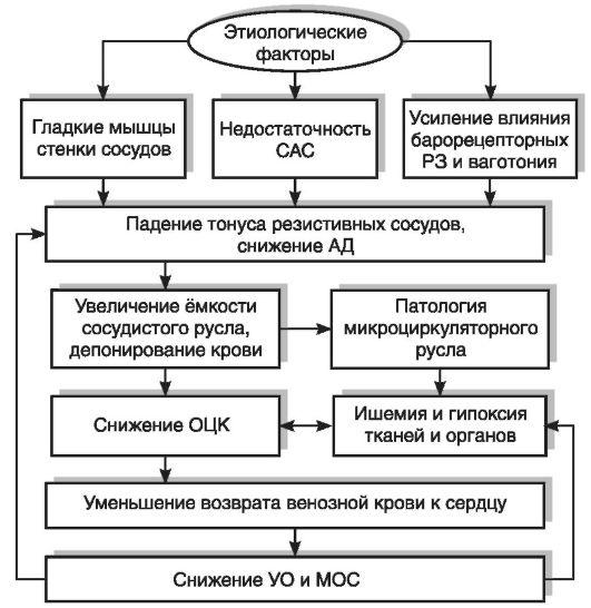 Схема патогенеза коллапса: САС