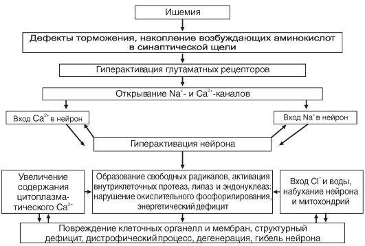 Патологический процесс в желудке | компью́терная томогра́фия.