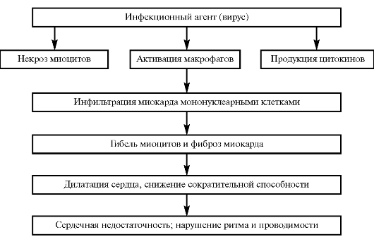 ГЛАВА III БОЛЕЗНИ