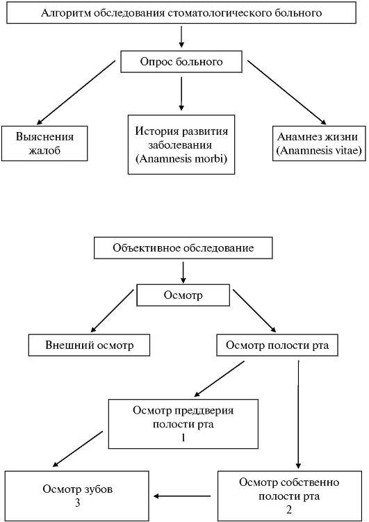 схема лечения паразитов всех видов