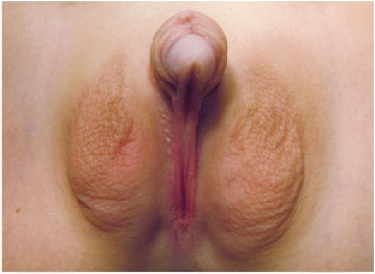 Порно фото намалеванных девах фото 661-941