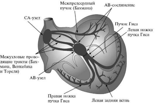 Хилово санаторий лечение официальный сайт