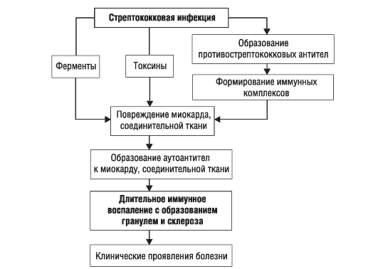 Общая схема патогенеза